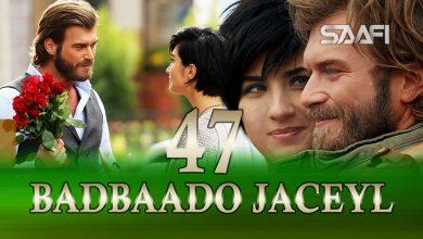 Photo of Badbaado Jaceyl Part 47 Jilaaga Muhanad Saafi Films Horn Cable