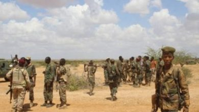 Photo of Somali Forces Kill Al-Shabaab Militants In Southern Region