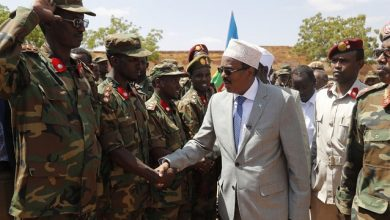 Photo of Somali President Cordially Welcomed In Guriel Town