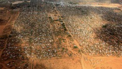 Photo of Construction Of 400KM Kenya-Somalia Border Wall Still On