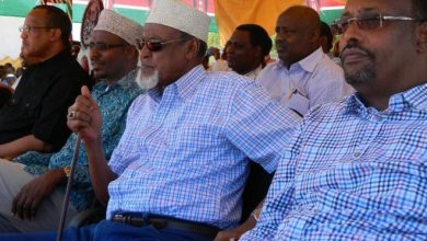 Photo of Court rules Wajir Senator's win is valid, dismisses two petitions