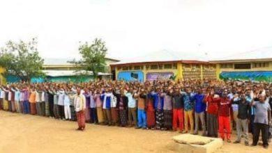Photo of Ethiopia's Somali State Pardons 1,500 Detainees