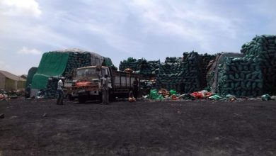 Photo of Kismayo On The Spot Over Illegal Charcoal Exports