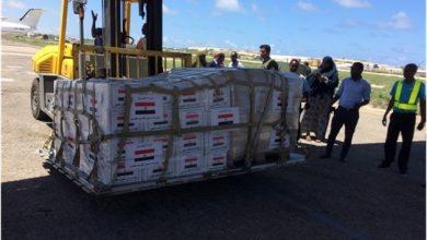 Photo of Egypt Provides Medical Aid To Somalia