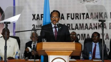 Photo of Somalia President Warns Against Breach Of Sovereignty