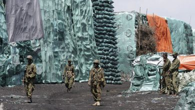 Photo of Jubbaland President Resumes Illicit Charcoal Exports Despite UN Ban