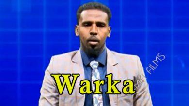 Photo of WARKA 27 03 2018 Madaxweyne Farmaajo oo Muqdisho kulan kula qaatay Xildhibaan Mareykan ah soona dhaweeyey safiirka cusub ee dalka Mauritania