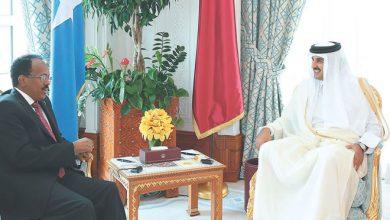 Is Qatar taking advantage of Somalia – UAE dispute?