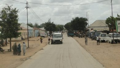 Somali Troops Launch Military Operation Near Jowhar