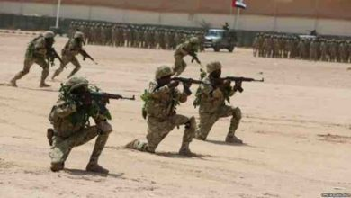 UAE Disbands Training Mission In Somalia