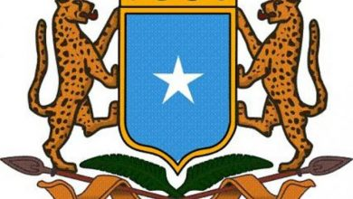 Photo of Somali Government Abolishes Alleged Deal With SKA International