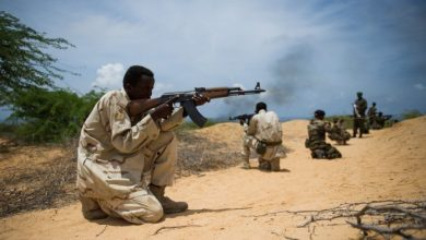 Photo of Somalia Mulls Integration Of Pro-Gov't Militia Into Security Force