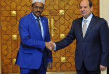 Farmajo Holds Phone Talks With His Egyptian Counterpart