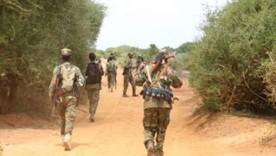 Somali Military Says 30 Fighters Killed In Offensive Against Al-Shabab