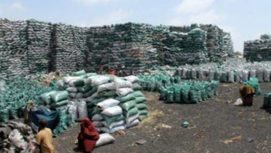 Photo of Somalia To Host Conference On Illegal Charcoal Trade
