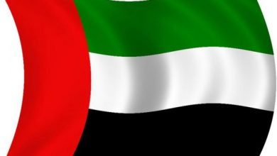 UAE Denounces Seizure Of Cash And Plane In Somalia