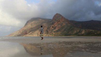 Socotra: How a strategic island became part of a Gulf power struggle