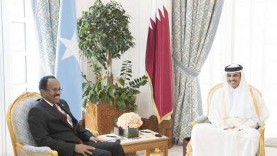Gulf Crisis Threatens East Africa Peace Efforts, EU Warns