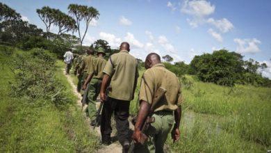 Al-Shabab Kills 3 Kenyan Quarry Workers In Mandera Town