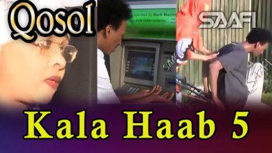 Musalsalka Kala Haab 5 Sheeko taxane ah oo qosol badan Faarax Murtiile
