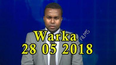 Photo of WARKA 28 05 2018 Waxqabadka maamulka degmada Hiliwa & qaabka ay shaqeeyaan ciidamada xiliyada habeenkii oo lasoo bandhigay