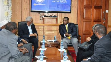 Somali Senate Speaker Invites His Kenyan Counterpart To Mogadishu