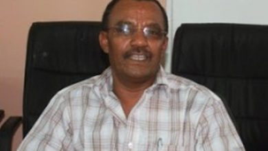 IGAD Reportedly Terminated Contract Of Gebre As Senior Adviser