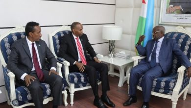 Photo of Somalia, Djibouti Discuss Security Operation