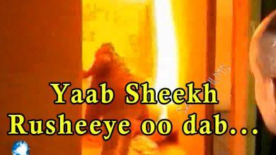 Photo of Sheekh Rusheeye oo usoo gurmaday reer Hargeysa degan oo gurigooda dab uu qabsado mar kasta