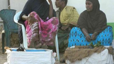 Photo of Mandera village bans chewing, sale of miraa