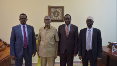 Photo of AU Special Representative Holds Talks With Somalia's Senate Leadership