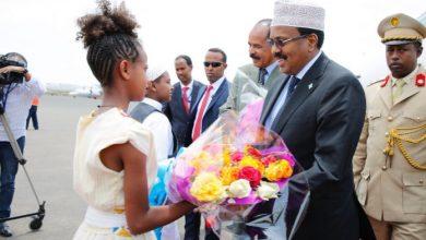Photo of Somalia President Makes Diplomatic Visit To Eritrea
