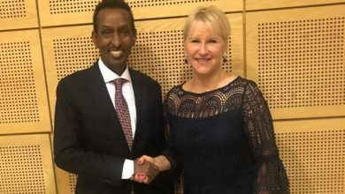 Somali Foreign Minister Meets With His Swedish Counterpart