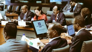 Farmajo Co-Chairs Brussels Conference Which Enters Its 2nd Day