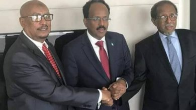 Photo of Somali President Meets With Somaliland Officials In Brussels