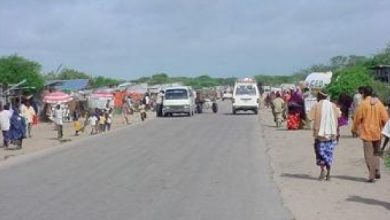 Somali Forces Allegedly Killed Civilians Outside Mogadishu