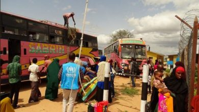 Photo of UNHCR Says It Assisted Over 800 Somalis To Voluntarily Return Home