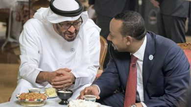 Photo of Ethiopia: Exploiting the Gulf's scramble for the Horn of Africa