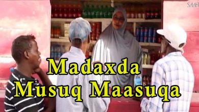 Photo of SHEEKO GAABAN Madaxda masuqmaasuqa daaraha ku dhisatay