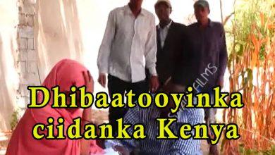 Photo of SHEEKO GAABAN dhibaatooyinka ay u geystaan ciidamada Kenya shacabka Soomaaliyeed