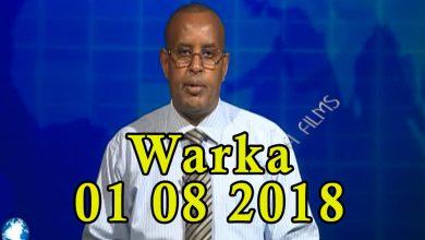 Photo of WARKA 01 08 2018 Dowlada Jabuuti oo ka carootay hadal kasoo yeeray madaxweyne Farmaajo jawaab kululna ka bixisay