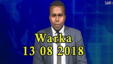 Photo of WARKA 13 08 2018 Wefdi uu hohaaminayey wasiirka arimaha dibada eriteria iyo kulan uu la qaatay madaxda dalka ugu sareysa