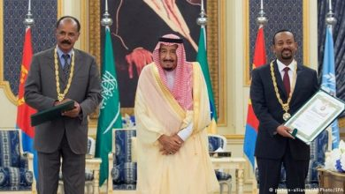 Photo of Arab Gulf states in the Horn of Africa: What role do they play?