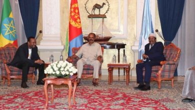 Photo of Ethiopia, Somalia leaders urge dialogue to resolve Eritrea and Djibouti border dispute