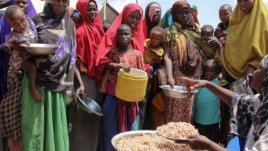 Photo of UN Says Over 1.5 Million Still Face Food Crisis In Somalia