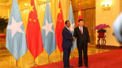 Photo of Farmajo Holds Bilateral Talks With His Chinese Counterpart Xi Jinping