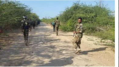 Photo of Somali Army Launches Anti-Al Shabaab Offensive In Ged Region