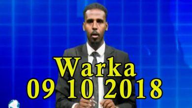 Photo of WARKA 09 10 2018 Raisulwasaare Xasan Cali Kheyre iyo wefdi uu hogaaminayo oo lagu soo dhaweeyey dalka Sacuudiga