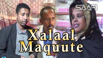 Xalaal Maquute Sheeko gaaban oo qiso macaan Nairobi Kenya Saafi Films