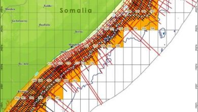 Photo of Somalia Announce Dates for First License Round